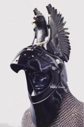 chevalier-noir.jpg